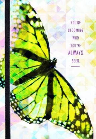 Butterfly Transition Encouragement
